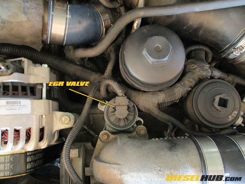 6 0L Power Stroke EGR Valve Removal & Replacement